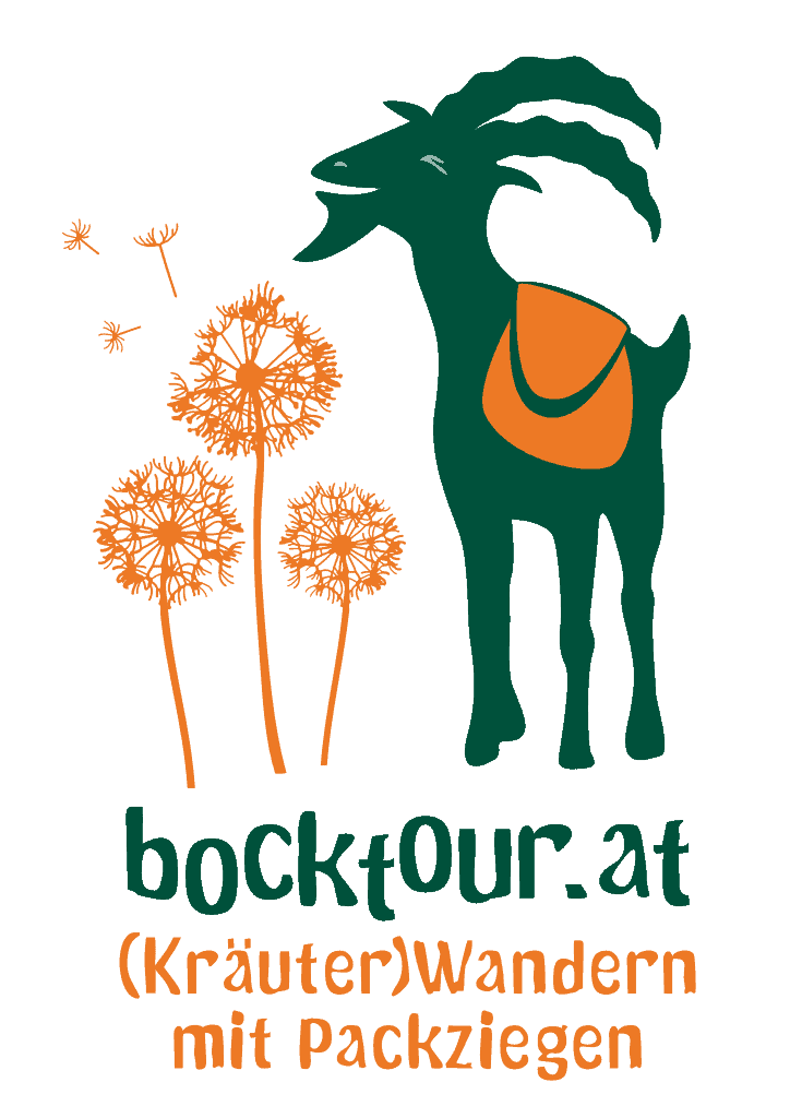 Corporate Design - bocktour.at